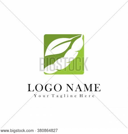 Soybean Logo Icon. Soy Bean. Vector Illustration