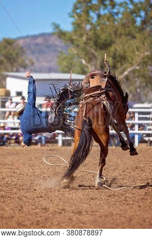 Cowboy Falling Off A Bucking Horse At A Country Rodeo