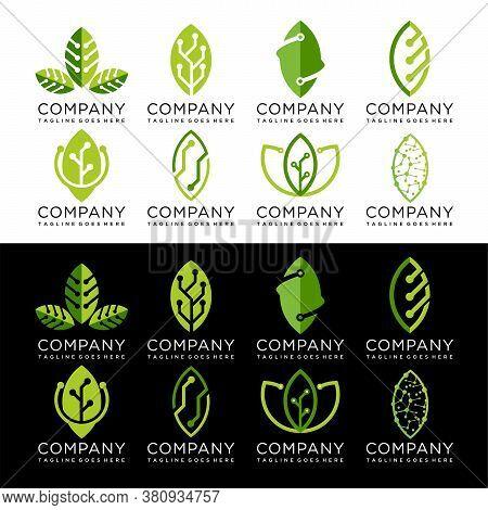 Set Of Green Leaf Technology Logo Design, Eco Tech Logo Template Design Vector Emblem Concept Design