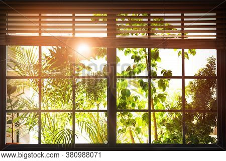 Sun Shining Through Window With Blinds In Morning