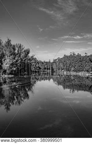 Lake Pristine With Green Forest Water Reflection And Bright Blue Sky At Morning In Black And White I
