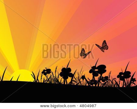 Butterflys And Flowers At Sunset