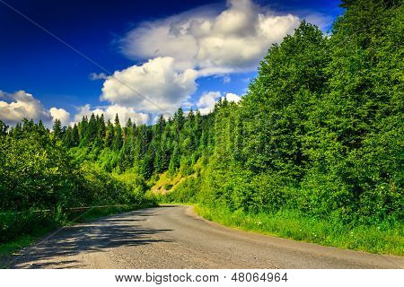 Mountain Route Through Pine Forest On A Summer Evening Horizontal