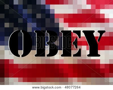 The ominous words OBEY in black block over white on a pixelated American flag. The perfect protest image, or anarchy image etc.