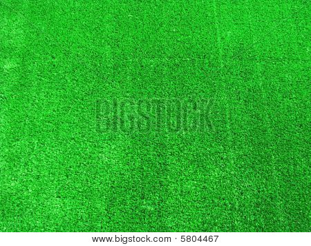 Excellent Background Of Grass