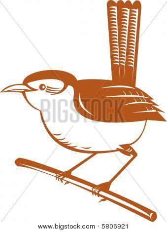 wren perched on a brach