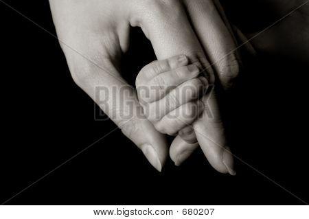 baby`s hand