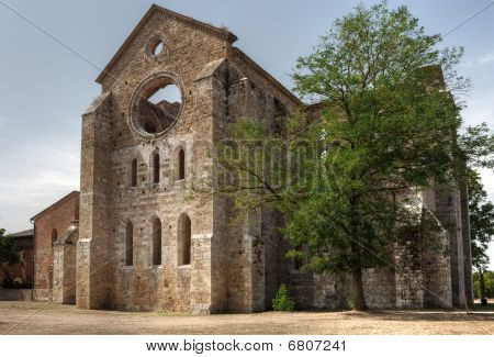 Roofless Old Cathedral