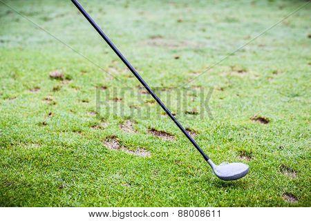 Golf Driver Club