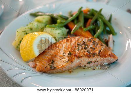 Grilled Salmon Dish