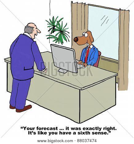 Perfect Forecast