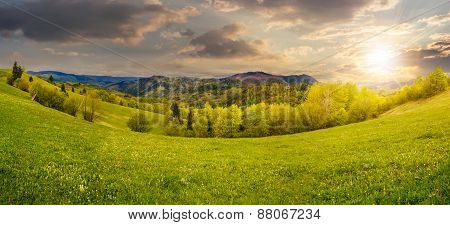Trees Near Meadow In Mountains At Sunset