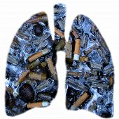 Outline of lungs filled with; cigarettes butts, grimy water, ash and other disgusting objects. poster