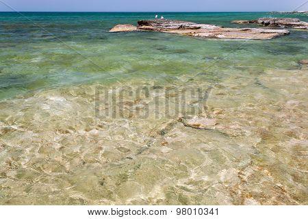 Caspian Sea In The Summer.