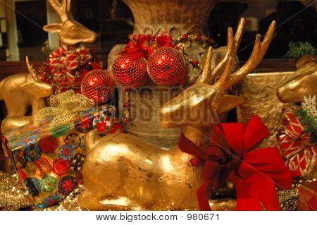 Christmas_Dsc_0185