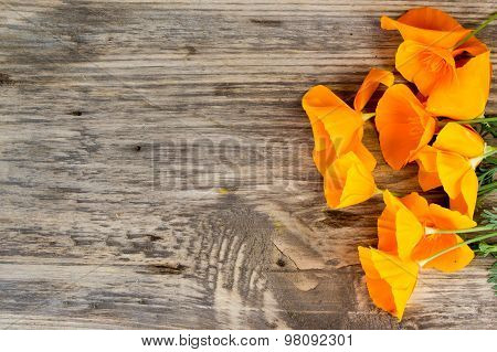 California Poppy (eschscholzia Californica) Orange Flowers On A Wooden With Copy Space