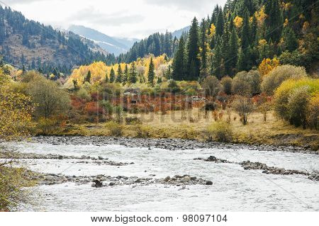 China Sichuan autumn scenery