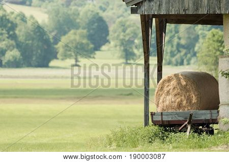 Hay bales on a trailer on a green meadow