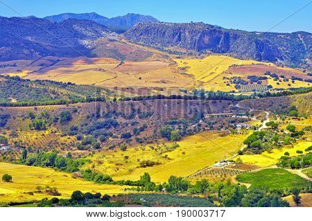 Andalusian landscape in late summer surroundings of Ronda village (Spain).