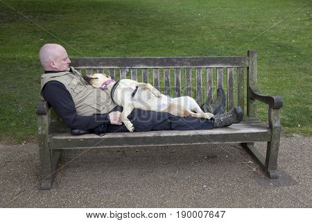 London United Kingdom 6 may 2017: dog sleeps on man who lies on park bench in london st james's park