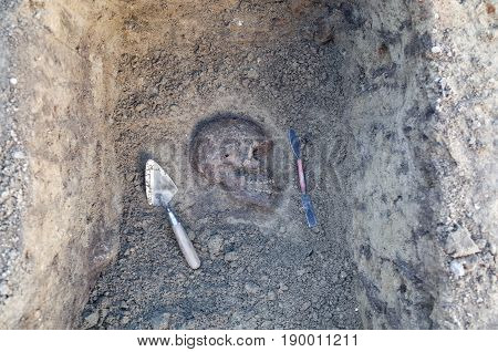 Archaeological excavation with skeletons skulls and spartels to dig with