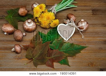 Posy of Yellow Dandelions,Forest Mushrooms,Green Leaves on the Wooden Table.Wish Card.Garden's Background.