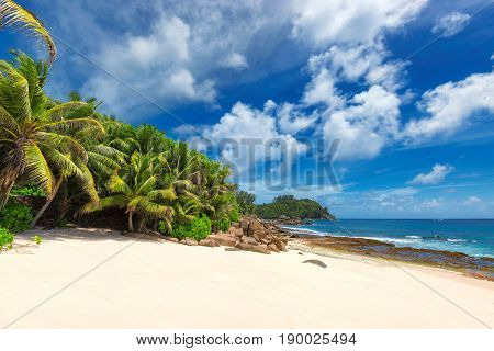 Untouched tropical beach with white sand at sunny day on ocean island