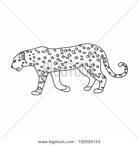 Leopard.African safari single icon in outline style vector symbol stock illustration .