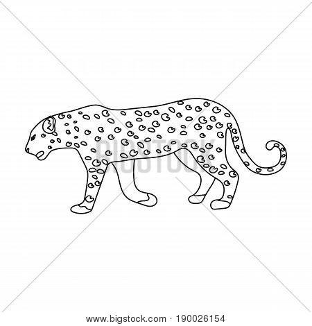 Leopard.African safari single icon in outline style vector symbol stock illustration .