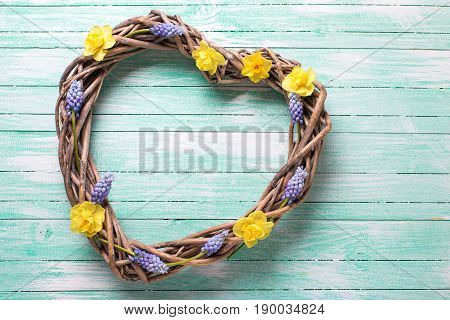Decorative heart and bright spring flowers on aquamarine wooden background. Selective focus. Flat lay.