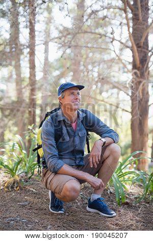 Happy mature male hiker kneeling against trees