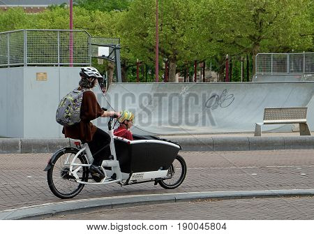 AMSTERDAM NETHERLANDS - MAY 16 2017: Woman carries a child in a bicycle trolley on the street