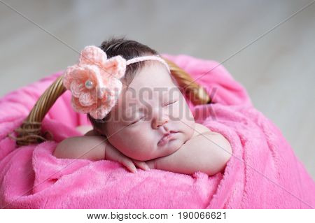 Newborn sleeping with knitted flower on head. Infant baby girl lying on pink blanket in basket. Cute portrait of new child.