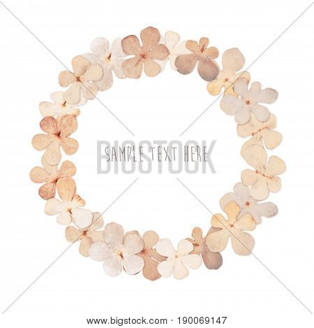 Pressed and dried flowers wreath isolated on white background. For use in scrapbooking floristry or herbarium.
