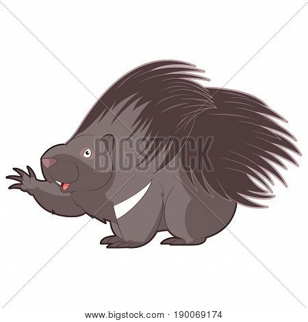 Vector image of the Cartoon happy Porcupine