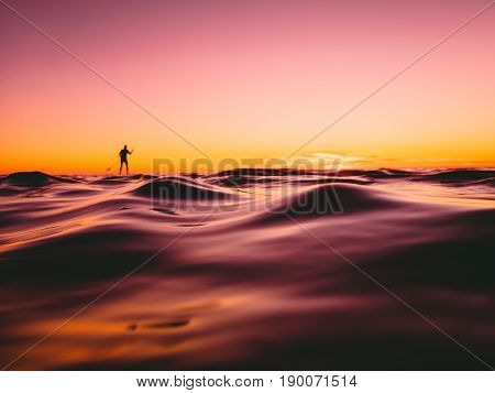 Stand up paddle surfing in ocean with beautiful sunset or sunrise colors