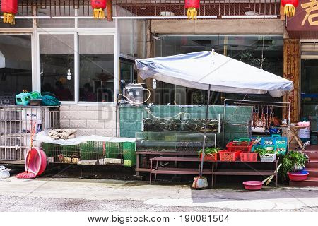 Aquarium With Fishes And Vegetables Near Eatery