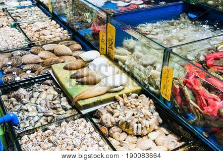 Various Mollusks In Fish Market In Guangzhou City