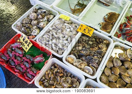Squids And Clams In Fish Market In Guangzhou City