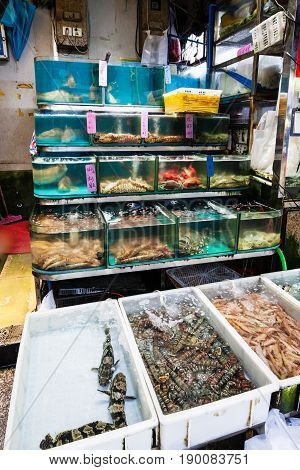 Aquariums And Boxes In Fish Market In Guangzhou