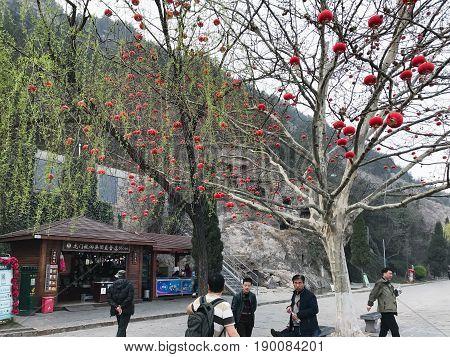 Tourists Near In Gift Shop In Longmen Grottoes