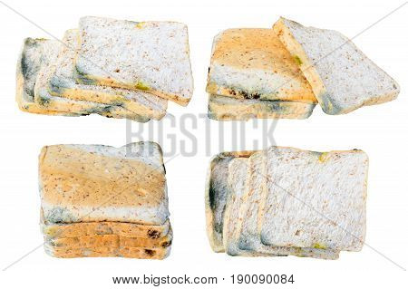 Mold on bread expired isolated on white background