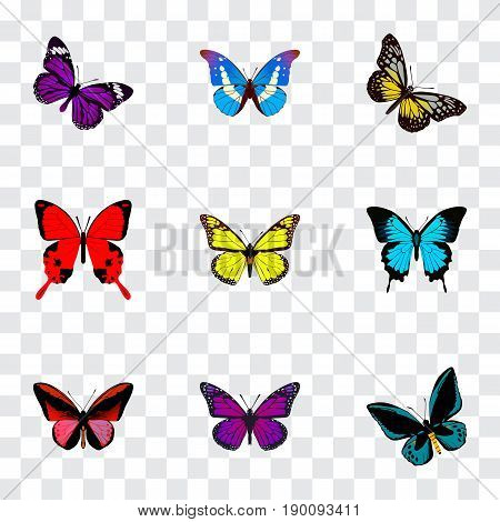 Realistic Purple Monarch, Callicore Cynosura, Bluewing And Other Vector Elements. Set Of Beauty Realistic Symbols Also Includes Butterfly, Beautiful, Beauty Objects.