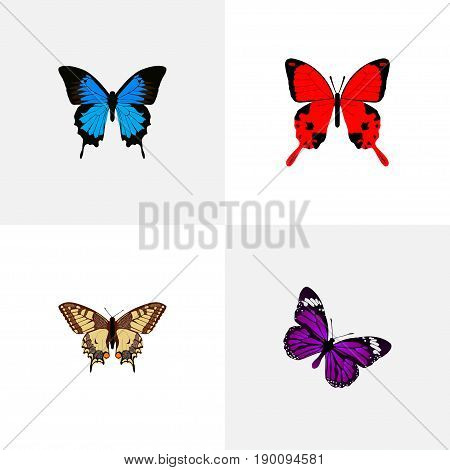 Realistic Tiger Swallowtail, Butterfly, Common Blue And Other Vector Elements. Set Of Moth Realistic Symbols Also Includes Red, Purple, Cypris Objects.