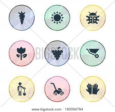 Vector Illustration Set Of Simple Gardening Icons. Elements Beetle, Sunshine, Fruit And Other Synonyms Spade, Ladybug And Machine.