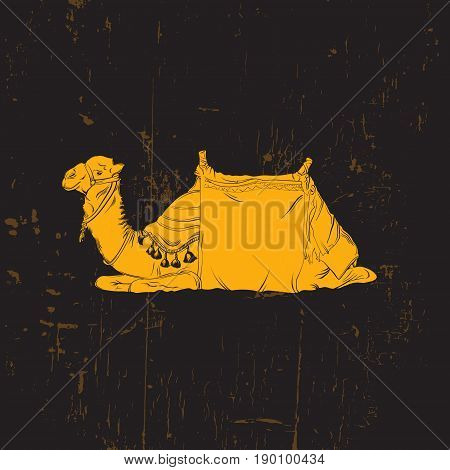 Vector illustration of camel. Hand drawn camel made in realistic line sketch style. Template for postcard poster banner and print for t-shirt