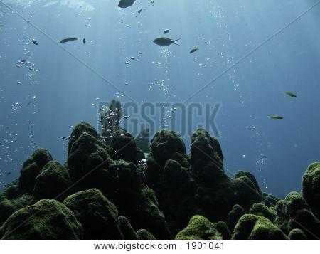 Bubbling Rocks