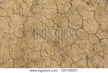 Dried up and cracked soil near Shoreham West Sussex England