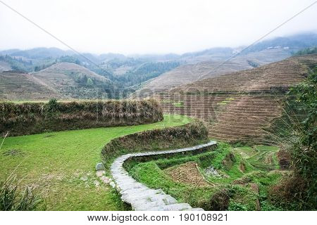 Terraced Gardens Of Tiantouzhai Village