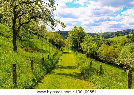 Hill landscape in Germany. Kronenburg in the region of Eifel. poster